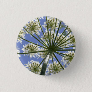 Wildflower Hogsweed Flower Button / Badge