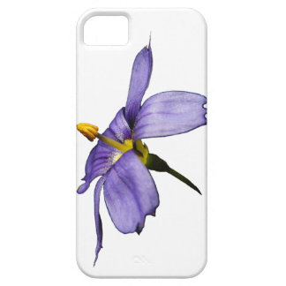 Wildflower ~ iPhone 5 CaseMate Barely There iPhone SE/5/5s Case