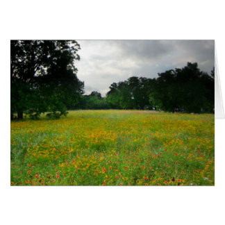 Wildflower Meadow - Butler Trail - Austin Texas Card
