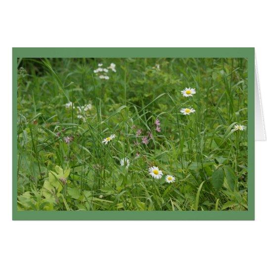 Wildflower Meadow Card