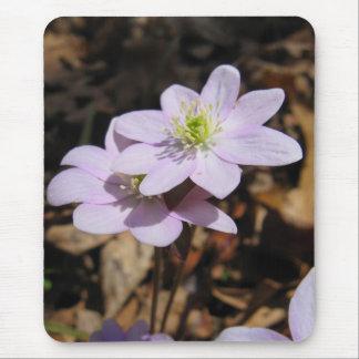 Wildflower Mousepad de Lavendar Tapete De Raton