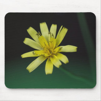 Wildflower Mousepad floral del amarillo de la mala