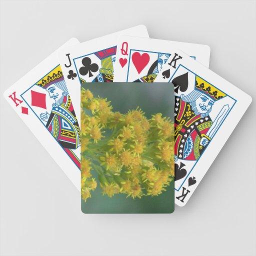 Wildflower negro de la botánica de la flor de la f barajas