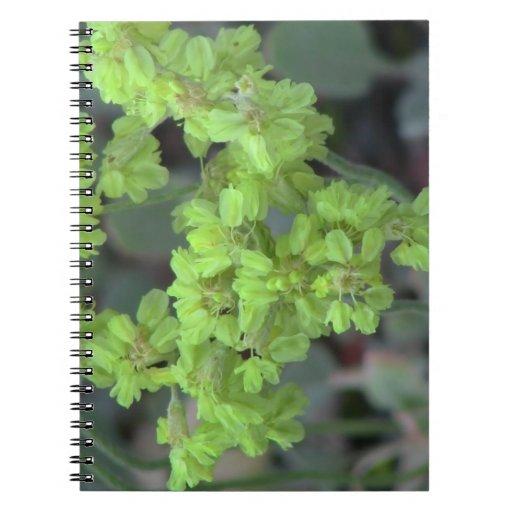 Wildflower negro de la botánica de la flor de la f libreta espiral
