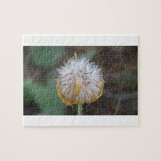 Wildflower negro de la botánica de la flor de la f rompecabezas
