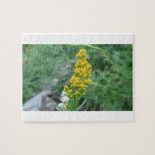 Wildflower negro de la botánica de la flor de la f puzzles con fotos