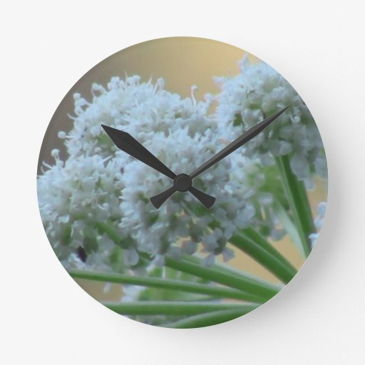Wildflower negro de la botánica de la flor de la f reloj de pared
