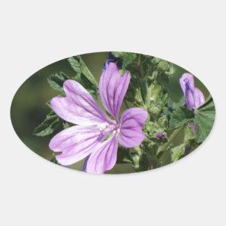 wildflower oval sticker