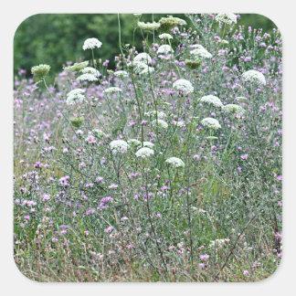 Wildflower photo square sticker