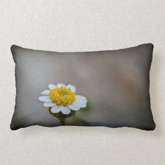 Wildflower Pillow 1