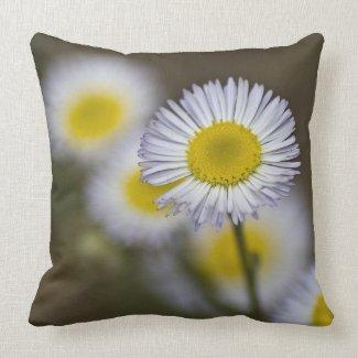 Wildflower Pillow 7 throwpillow