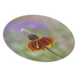 Wildflower Plate plate