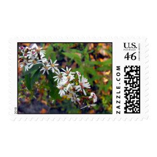 Wildflower Postage