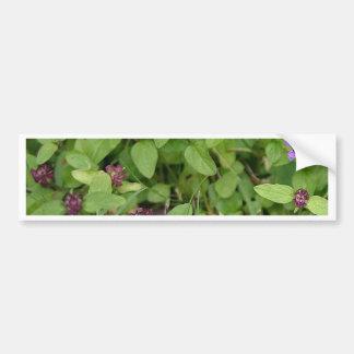 Wildflower púrpura del arcángel pegatina de parachoque