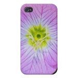 Wildflower púrpura iPhone 4 protector