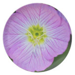 Wildflower púrpura platos de comidas