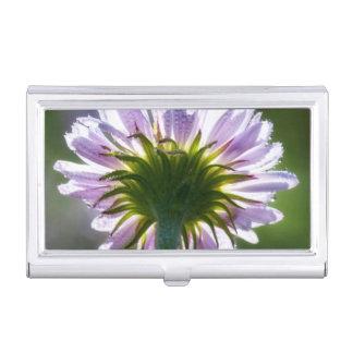 Wildflower púrpura retroiluminado con las gotas de cajas de tarjetas de negocios