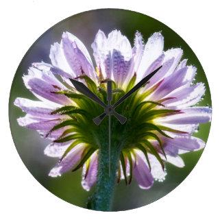 Wildflower púrpura retroiluminado con las gotas de relojes de pared
