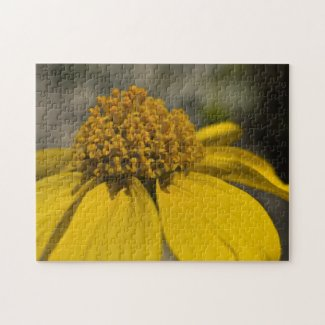 Wildflower Puzzle 2 puzzle