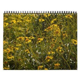 Wildflower Scripture Calendar calendar