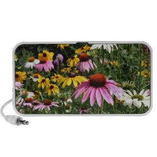 Wildflower Speakers