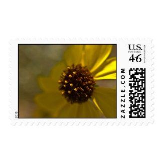 Wildflower Stamp 3 stamp