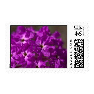 Wildflower Stamp 6 stamp