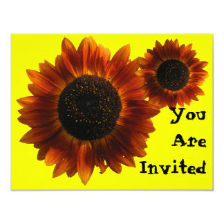 Wildflower Sunflowers Card