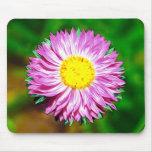 Wildflower Tapete De Raton