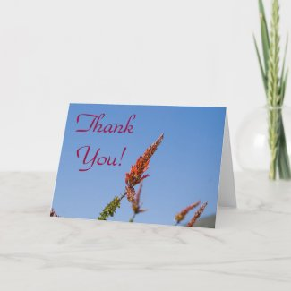 Wildflower Thank You Card 4 card