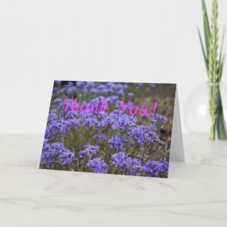 Wildflower Thank You Card 5 card