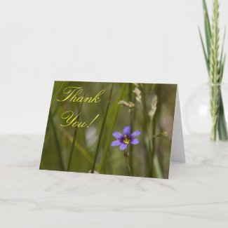 Wildflower Thank You Card 6 card