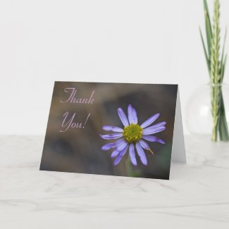 Wildflower Thank You Card 7 card