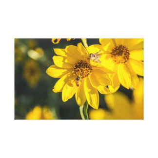 Wildflower with bee canvas print