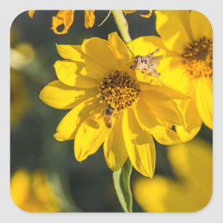 Wildflower with bee square sticker