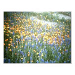 "WILDFLOWERS 1 4.25"" X 5.5"" INVITATION CARD"