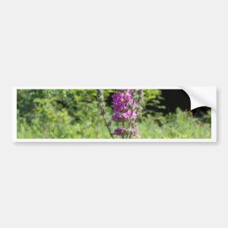Wildflowers 1 bumper sticker