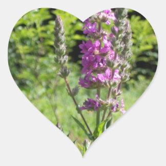 Wildflowers 1 heart sticker
