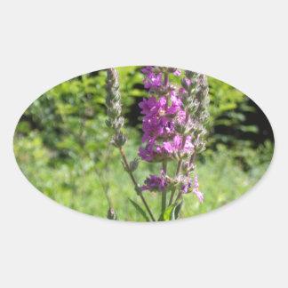 Wildflowers 1 oval sticker