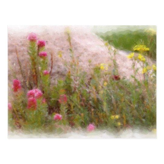 WILDFLOWERS 1 POSTAL