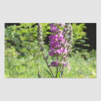 Wildflowers 1 rectangular sticker
