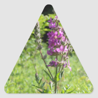 Wildflowers 1 triangle sticker