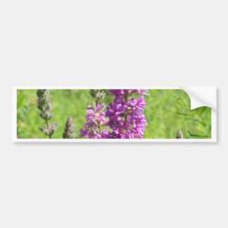 Wildflowers 2 bumper sticker