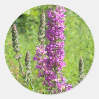 Wildflowers 2 classic round sticker