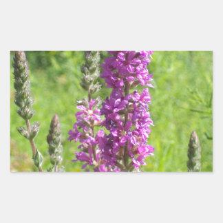 Wildflowers 2 rectangular sticker