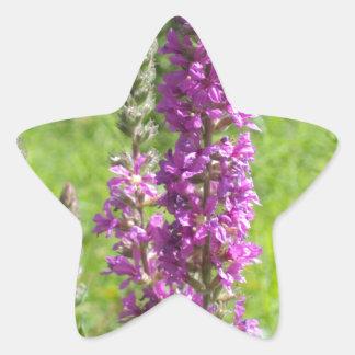 Wildflowers 2 star sticker