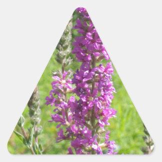 Wildflowers 2 triangle sticker