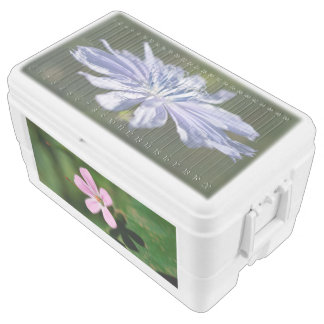 Wildflowers 48 Quart Ice Chest