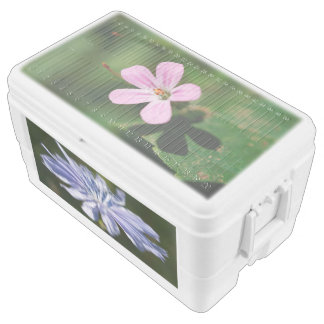 Wildflowers 48 Quart Igloo Ice Chest