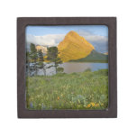 Wildflowers a lo largo del lago Swiftcurrent en el Cajas De Recuerdo De Calidad